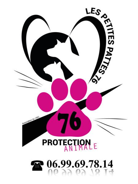 Création Logo P'tites Pattes 76